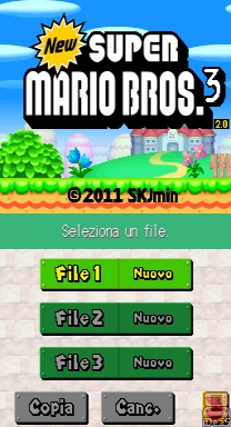 New Super Mario Bros 3 DS ROM