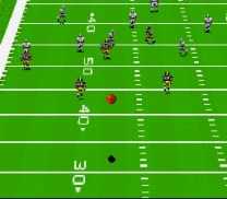 John Madden Football  ROM