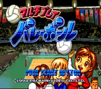 Multi Play Volleyball  ROM