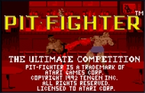 Pit Fighter - The Ultimate Competition Rom