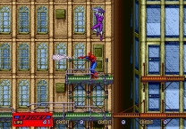 Spider-Man: The Videogame  ROM