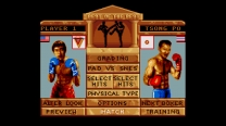 Super Kick Boxing - Best of the Best  ROM