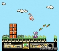 Tiny Toon Adventures  ROM