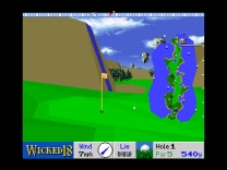 Wicked 18  ROM