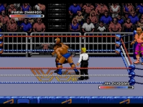 WWF Royal Rumble Rom